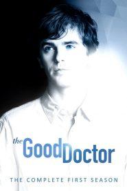 The Good Doctor: O Bom Doutor: Temporada 1