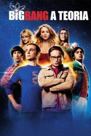 Big Bang: A Teoria: Temporada 7