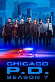 Chicago P.D. – Distrito 21: Temporada 7