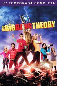 Big Bang: A Teoria: Temporada 5