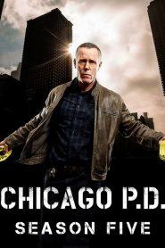 Chicago P.D. – Distrito 21: Temporada 5