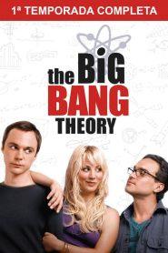 Big Bang: A Teoria: Temporada 1