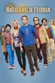 Big Bang: A Teoria: Temporada 8