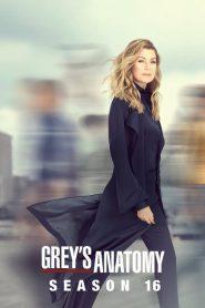 Grey's Anatomy: Temporada 16