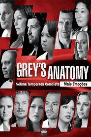 Grey's Anatomy: Temporada 7