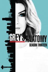 Grey's Anatomy: Temporada 13