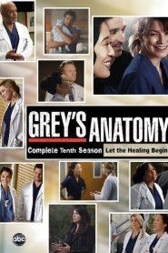 Grey's Anatomy: Temporada 10